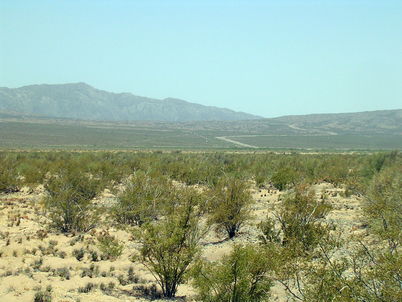 Image of field site at Talacasto, San Juan, Argentina